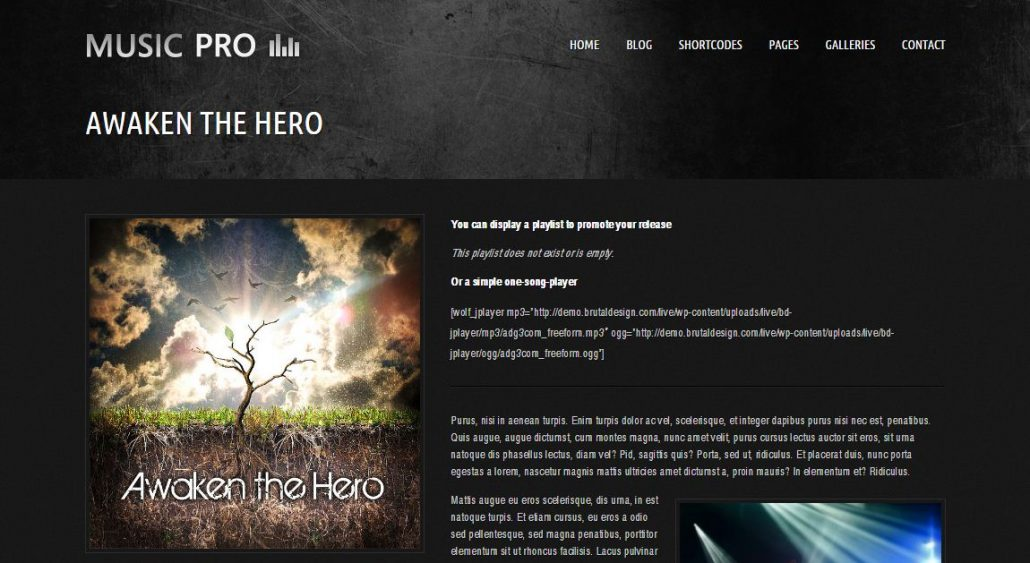 music-pro-wordpress-theme-music-artists-bands-clubs