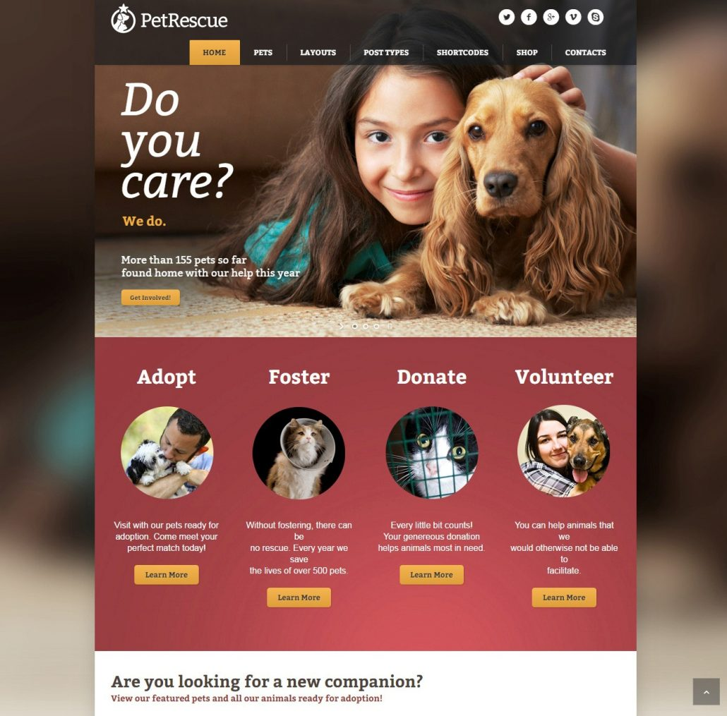pet-rescue-charity-wordpress-theme