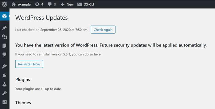 update wordpress core