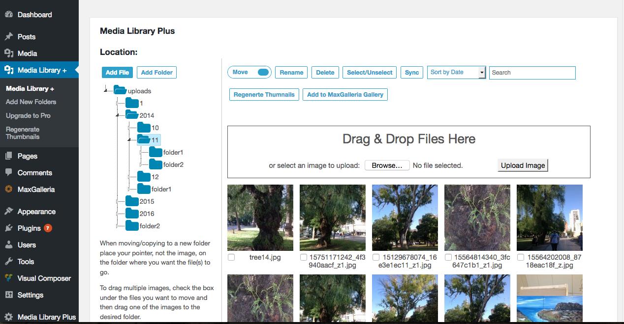 WordPress media library folder