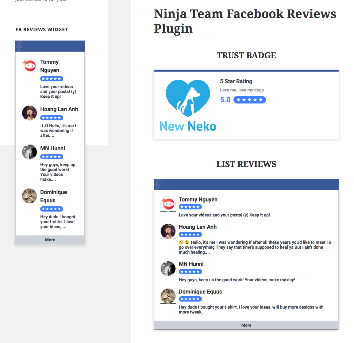 facebook-reviews-frontend