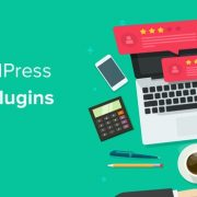 wordpress review plugin