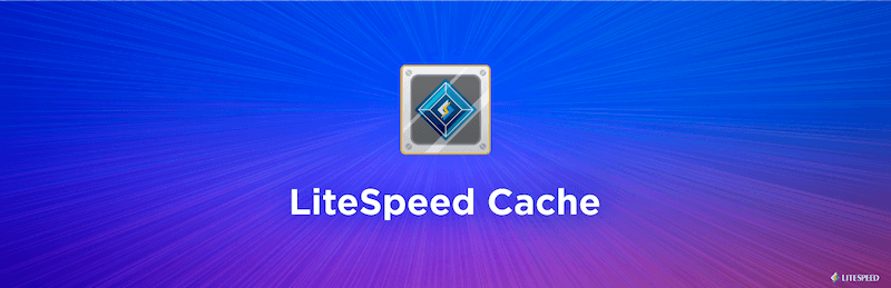lightspeed cache