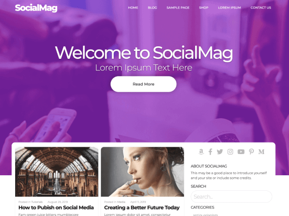 SocialMag free wordpress community theme