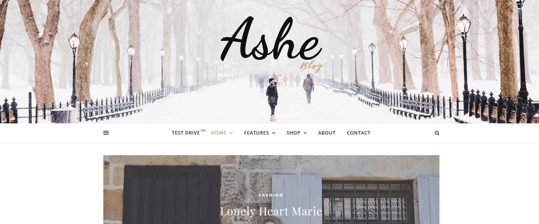 Ashe is one of the Best Free WordPress Themes for Small Business
