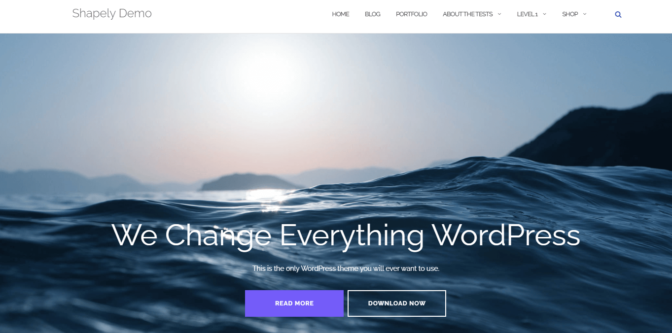 Shapely is one of the Best Free WordPress Themes for Small Business
