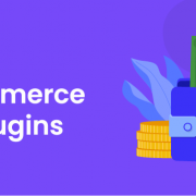 Best WooCommerce Wallet Plugins